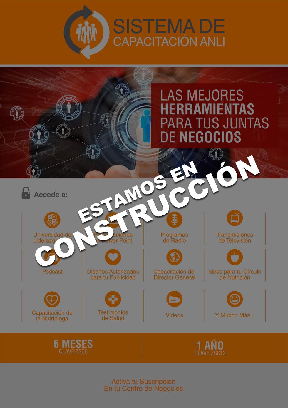 sistema_capacitacion_working